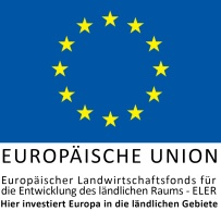 EULogoHieriInvestiert_zentriert (1)